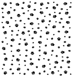 trace of dogs vector image
