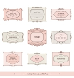 Vintage calligraphic frames and labels set vector