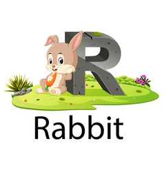 Zoo animal alphabet r for rabbit vector