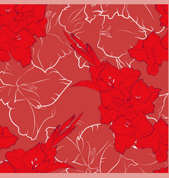 flower seamless pattern from red gladiolus vector image