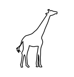 Giraffe animal isolated icon vector