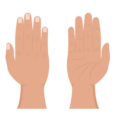 Hand view from inside and outside flat icons vector