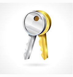 key icons in gold and silver color vector image