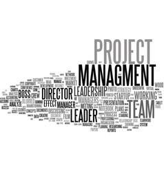 managment word cloud concept vector image