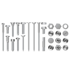 realistic metal screws construction steel screw vector image