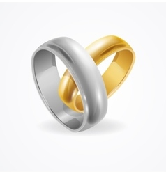 Silver and Gold Wedding Ring vector