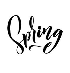 spring trendy script lettering design spring vector image
