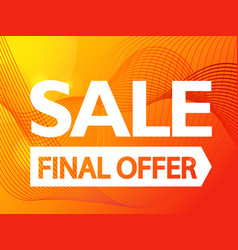 the final offer sale promo banner vibrant vector image