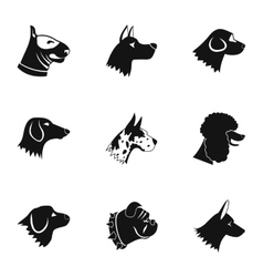 Types of dogs icons set simple style vector image