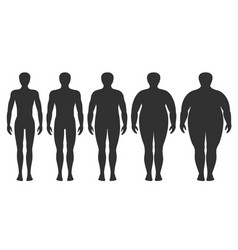 Body mass index underweight to extremely obese vector