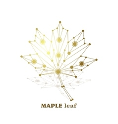 Gold maple leaf vector