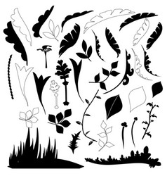 leaves are black and white vector image