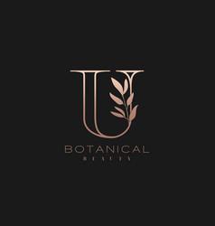letter u botanical elegant minimalist signature vector image