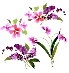 Lilac flowers Watercolor floral vector image