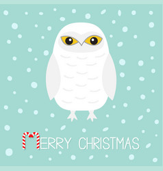 Merry christmas candy cane text white snowy owl vector