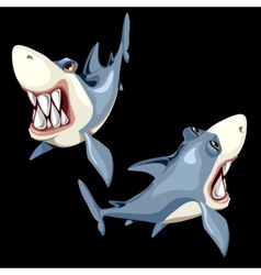Two fish sharks on a black background two sides vector