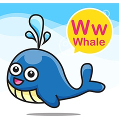 W Whale color cartoon and alphabet for children to vector image