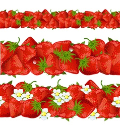 seamless border of strawberry vector image