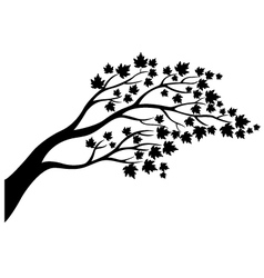 Maple tree silhouette vector image
