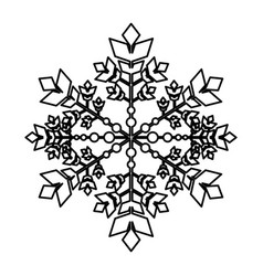 snowflake winter isolated icon vector image