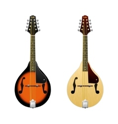 Realistic Mandolin isolated on white vector image