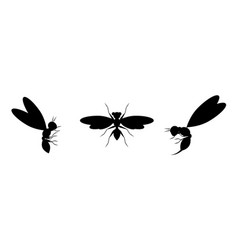 Black silhouettes on a white background wasps vector