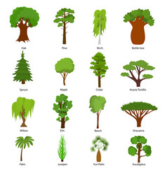Different green tree types icons set vector