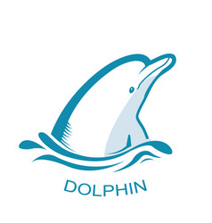 dolphin logo symbol isolated on white vector image