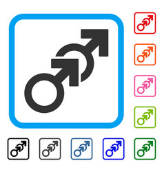 gay sex framed icon vector image