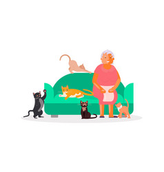 senior woman with a lot cats vector image