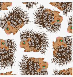 Wildlife porcupine decorative pattern on white vector