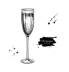 Champagne glass with bublles hand drawn isolated vector