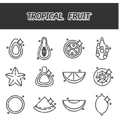tropical fruit cartoon concept icons vector image