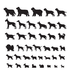 Dog breeds silhouette set vector