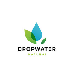 Drop water leaf logo icon vector