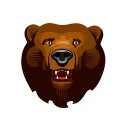 Kodiak Bear vector image