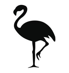 Silhouette a flamingo vector