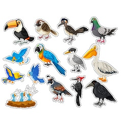 Sticker set with many types of birds vector image