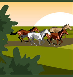 different breeds of horses vector image vector image