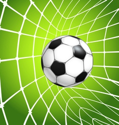net with the ball vector image vector image
