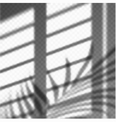 blurred palm leaves and blinds shadow cast vector image