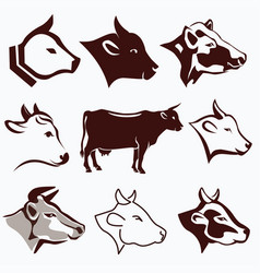 Cow head portraits collection in different styles vector