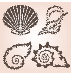 decorative seashells set vector image