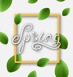 Spring lettering calligraphic text headline vector