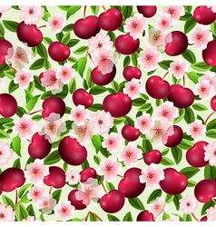 seamless texture of cherry vector image vector image