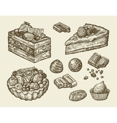 dessert food hand drawn cake pastry chocolate vector image