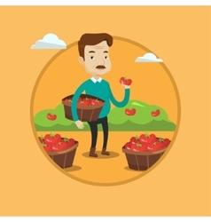 Farmer collecting tomatos vector image