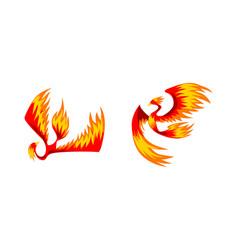 flying phoenix firebirds set mythical bird vector image