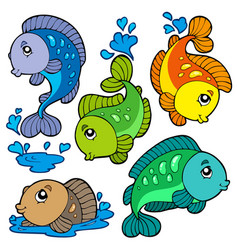 Freshwater fishes collection vector
