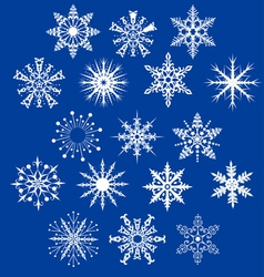 Set of decorative snowflakes vector image vector image